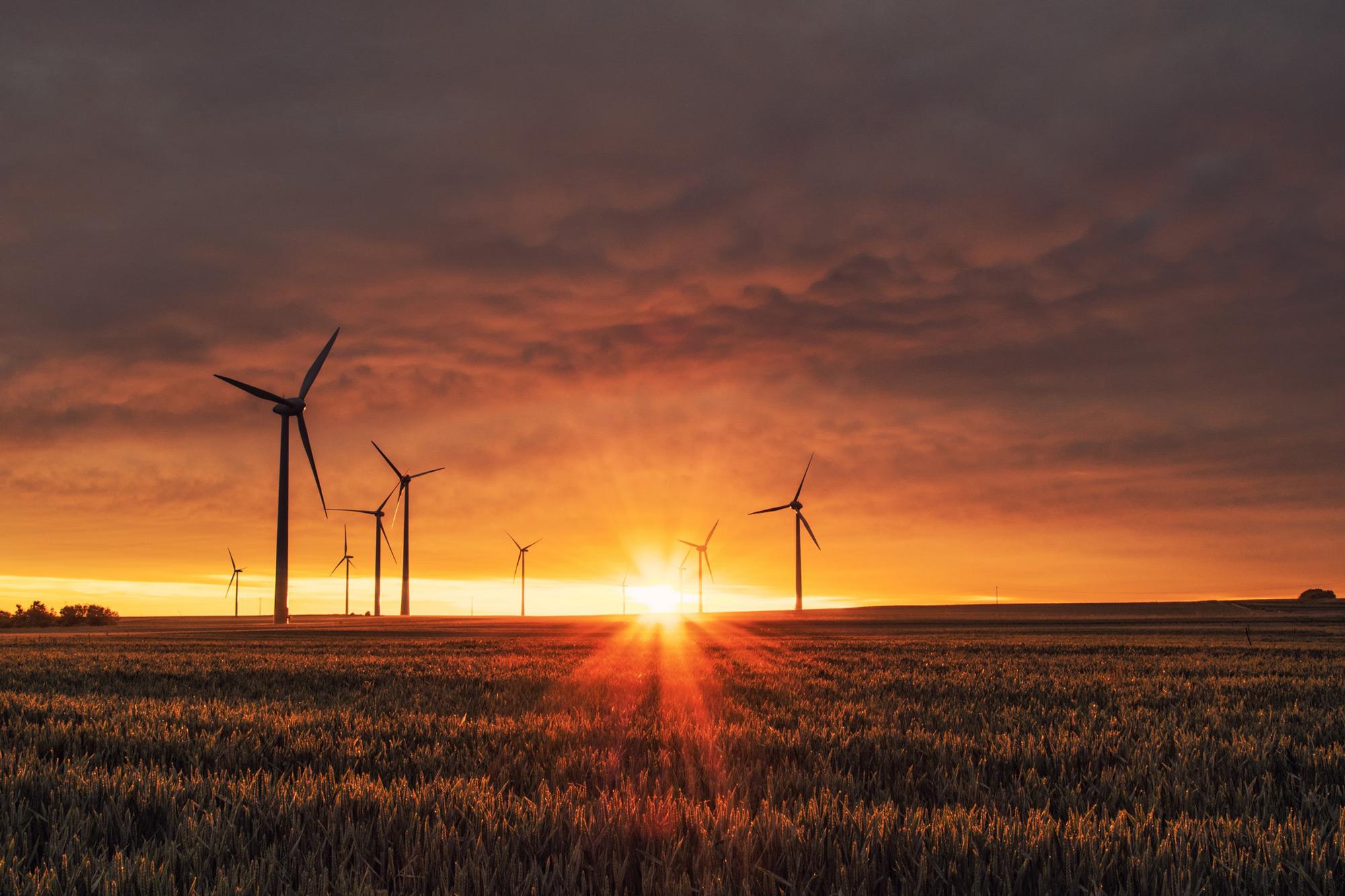 Das Foto zeigt auf einem Feld stehende Windräder im Sonnenuntergang.